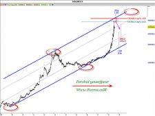 www.fxcma.com , Iran Market Gold Coin Analysis